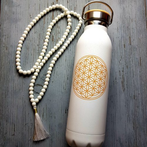 Isolier Trinkflasche Edelstahl BdL White