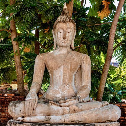 Sitzender Buddha Web